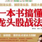 《引爆IP:影游漫文超级IP打造之道》王世颖